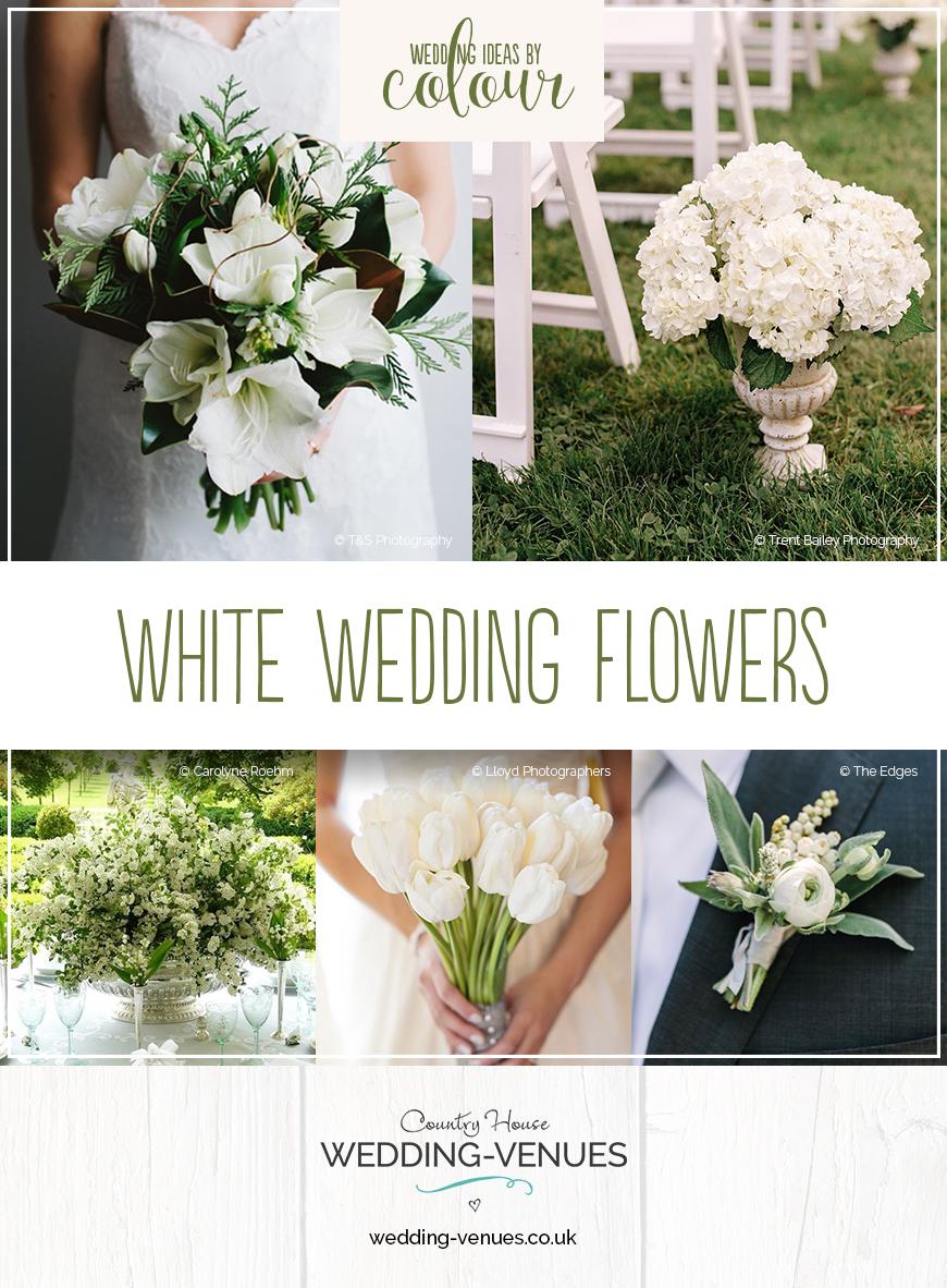 Wedding Ideas By Colour: White Wedding Flowers | CHWV