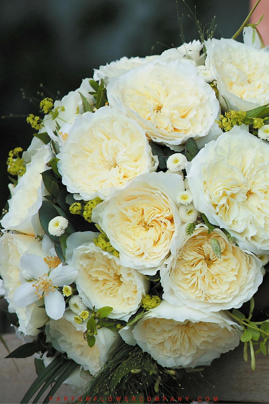 Wedding Ideas by Colour: Cream Wedding Flowers - Rose | CHWV