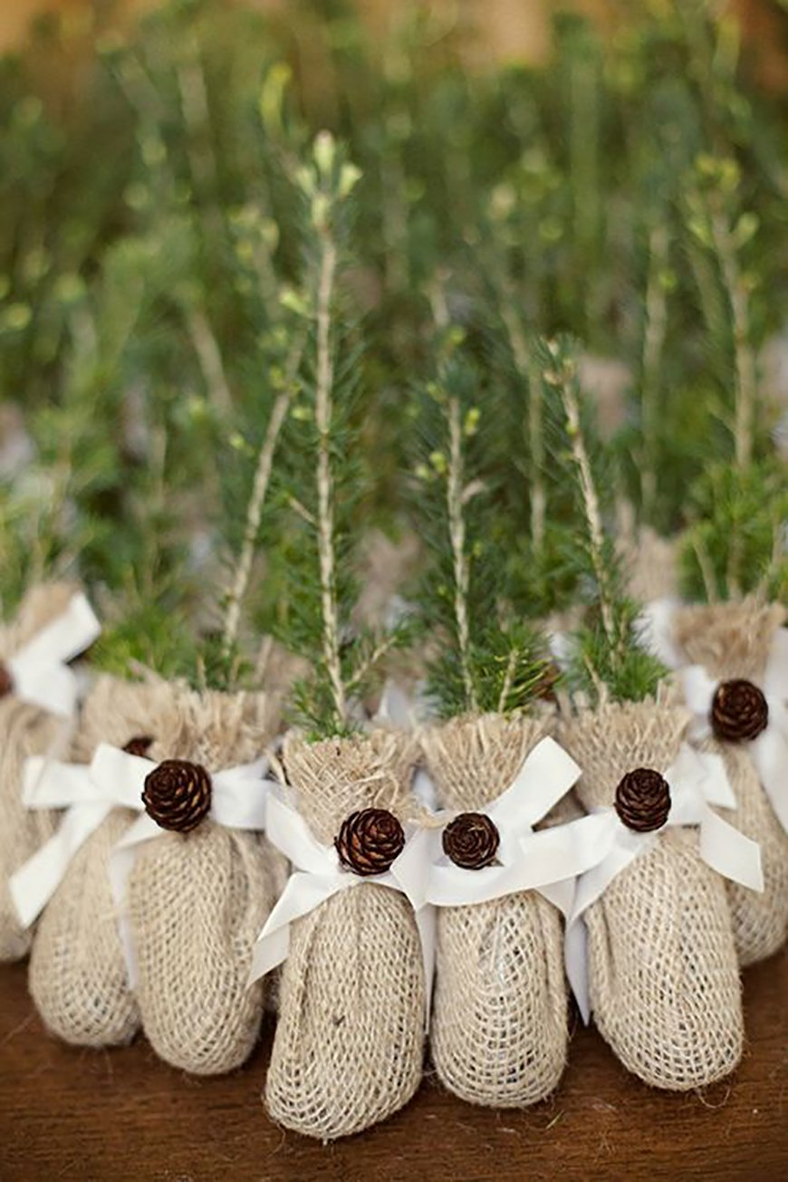 20 Festive Favours for a Winter Wedding - Evergreens | CHWV