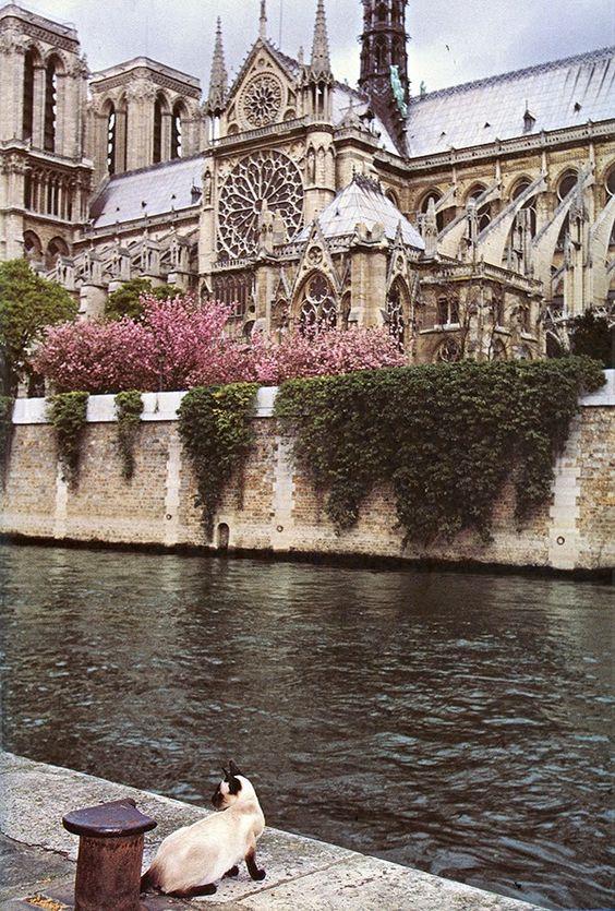 French Honeymoon Ideas