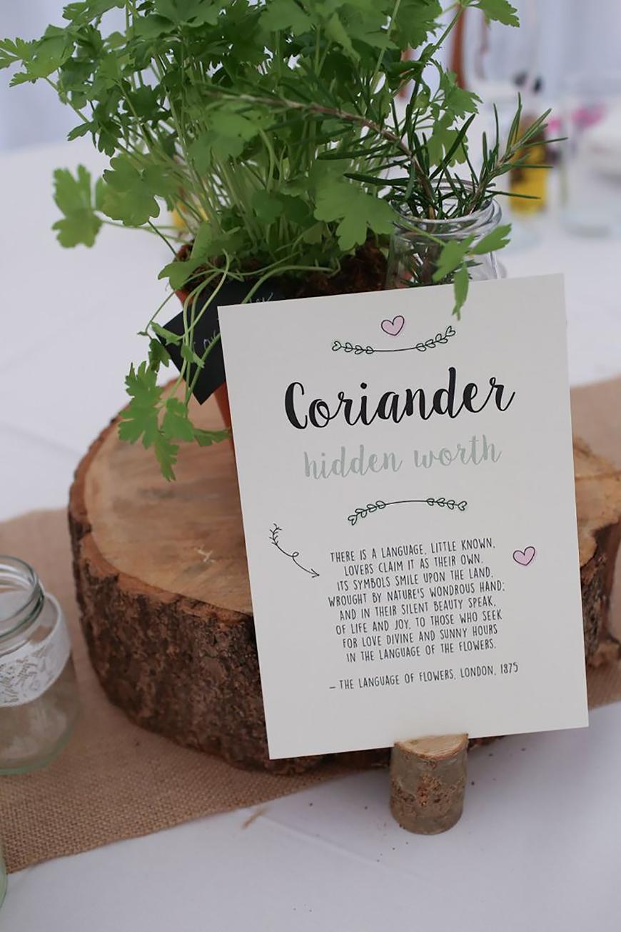 30 Amazing Wedding Table Name Ideas - A whole lotta herbs | CHWV
