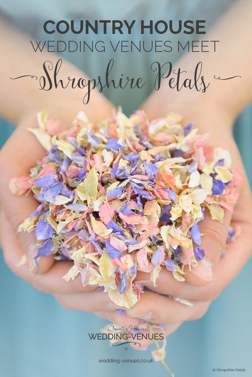 CHWV Meets…Shropshire Petals | CHWV
