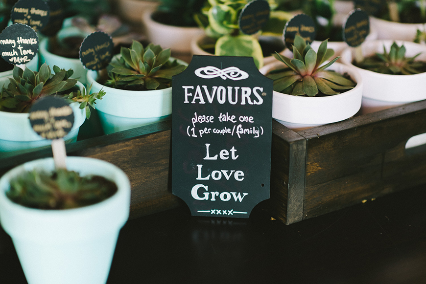 The Best Modern Wedding Favours For Every Style - Succulents | CHWV