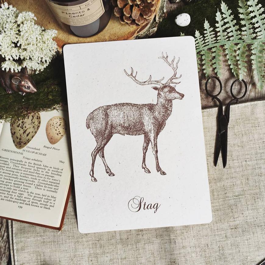 30 Amazing Wedding Table Name Ideas - Vintage nature | CHWV