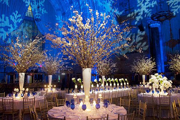 Christmas Wedding Ideas CHWV
