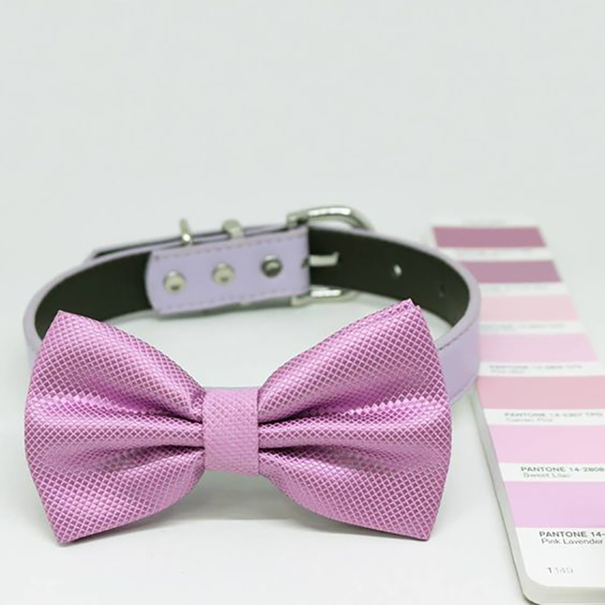 Wedding Ideas By Pantone Colour: Pink Lavender - Dog bowtie   CHWV