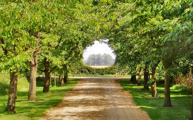 Farmhouse Wedding Venue Cambridgeshire
