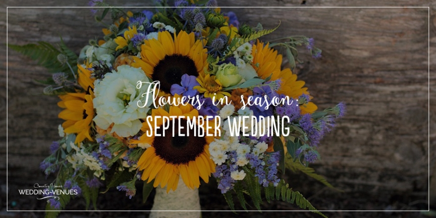 Wedding Flowers In Season: September Wedding | CHWV