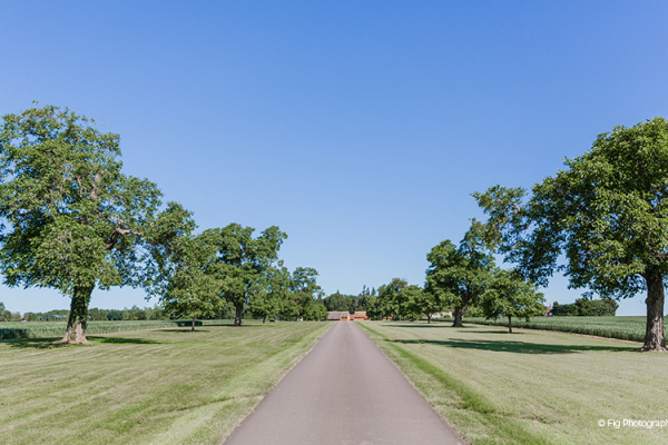 The driveway at Bassmead Manor Barns wedding venue in Cambridgeshire | CHWV