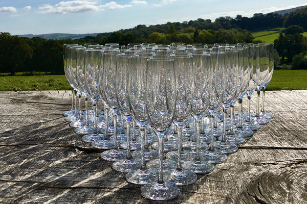 Drinks reception glasses with a view at Bignor Park wedding venue in West Sussex | CHWV
