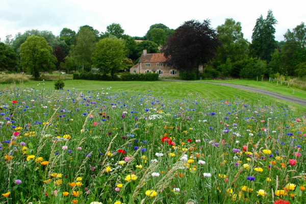 Wedding Venues In Somerset South West: Wedding Venues In The South West