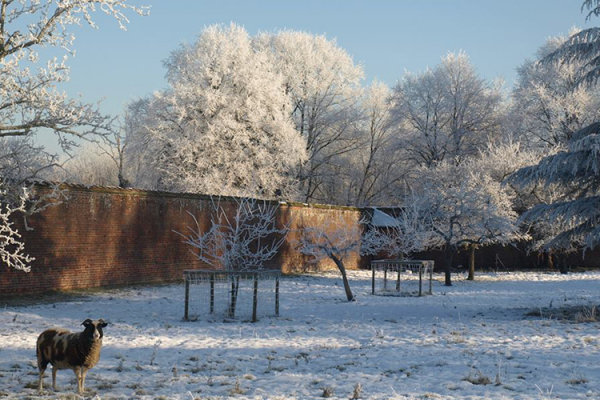 The East Garden in the snow at Holme Pierrepont Hall wedding venue in Nottinghamshire | CHWV