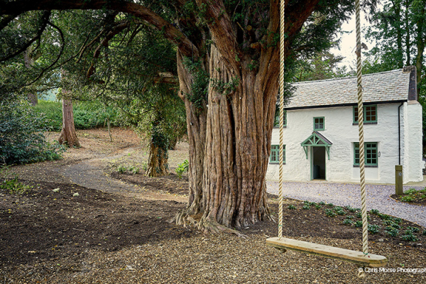 The tree swing in the grounds at Tyn Dwr Hall wedding venue in Denbighshire | CHWV