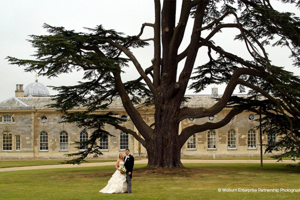 Woburn Abbey Bedfordshire Country House