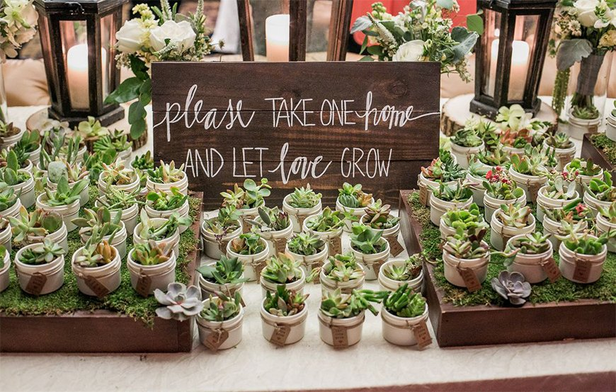 10 Ways To Use Succulents At Your Wedding - Favours | CHWV