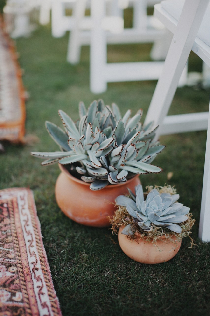 10 Ways To Use Succulents At Your Wedding - Chair decorations | CHWV