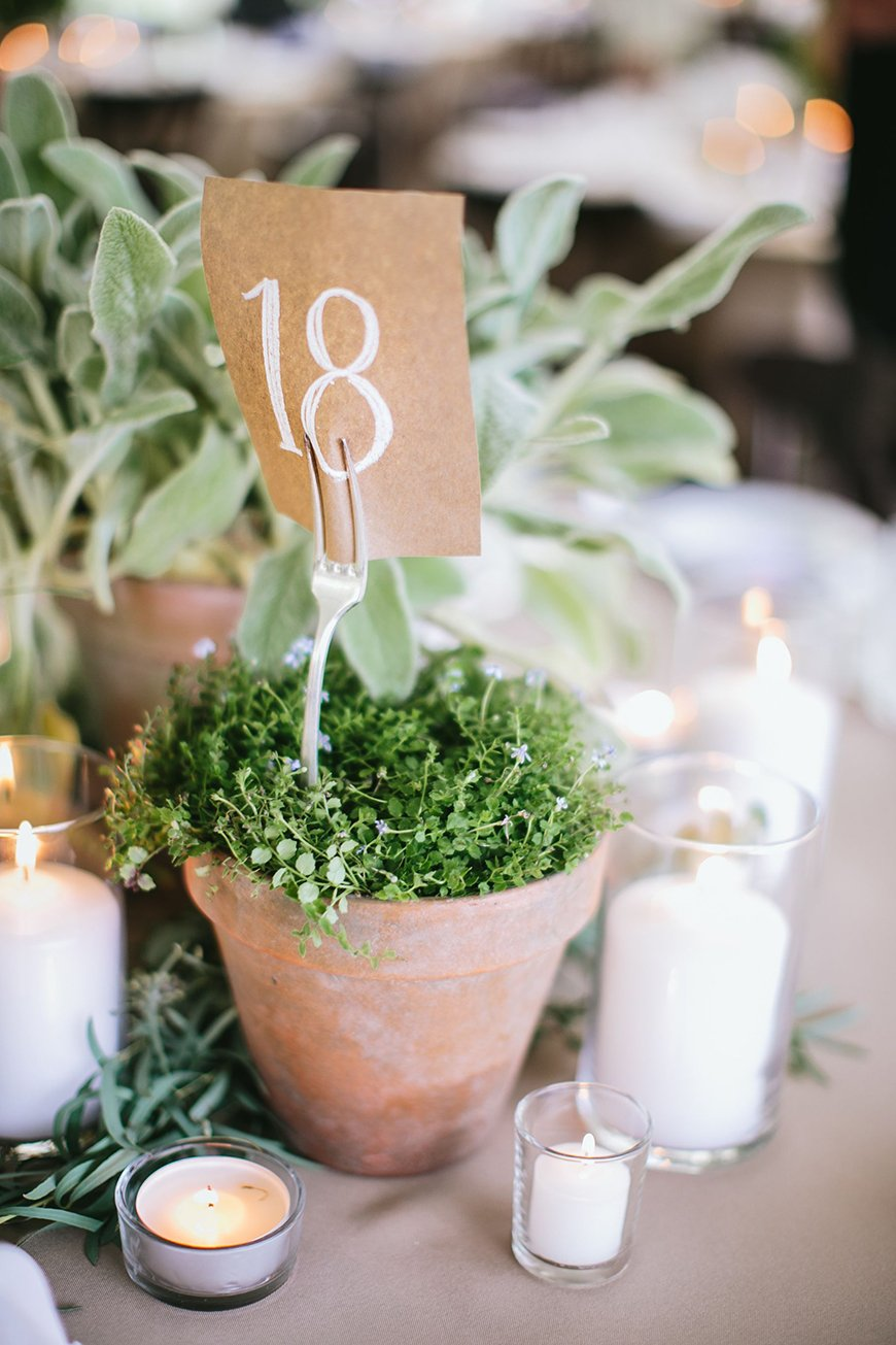 12 Unmissable Table Name Ideas - Plants | CHWV